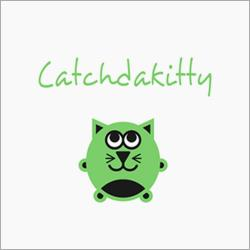 Catchdakitty