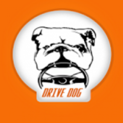 Drive Dog - App to reduce distractions while driving