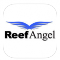 Reef Angel