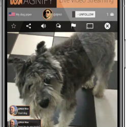 Magnify Live Steaming App