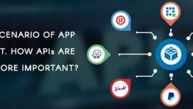 APIs are becoming more and more important in mobile app development. Why the shift?