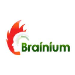 Brainium Information Technologies Pvt. Ltd.